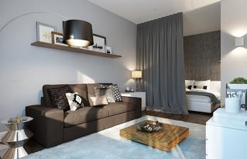 Гостиная со спальным местом