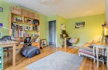 Комната в зелёном цвете с белым потолком