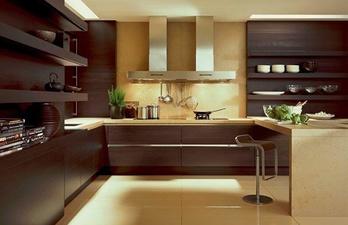 Кухня в тёмно-коричневых тонах в современном дизайне
